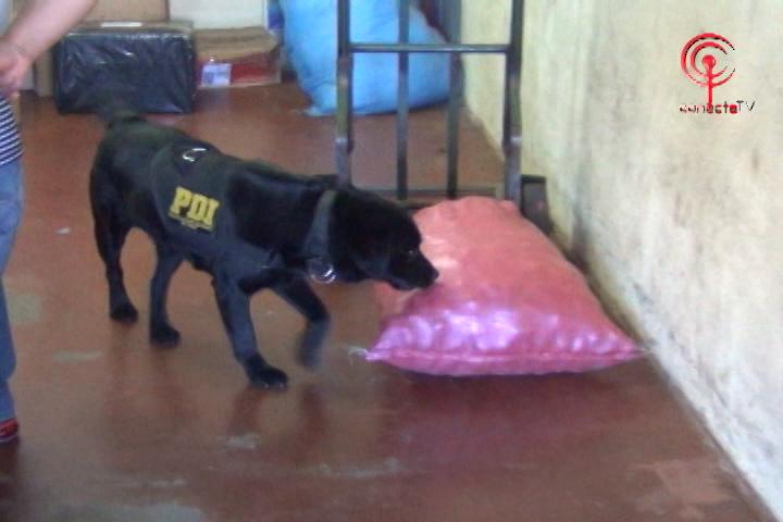 Policía de Investigaciones implementa Plan MT-0 para combatir la venta de drogas en Cañete