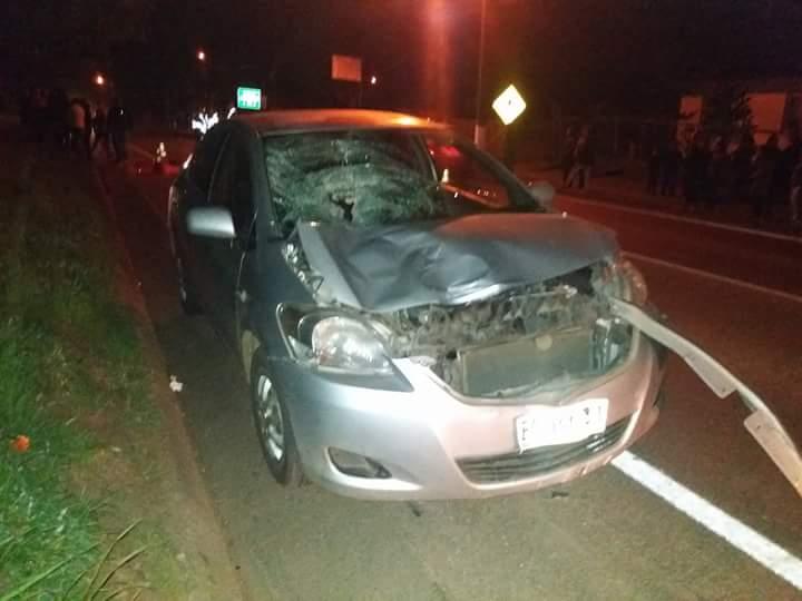 "Chofer que atropelló a menor ""no respetó paso de peatones e iba a exceso de velocidad"", estableció pre informe de la SIAT."