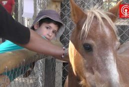 FAGAF Cañete 2017: niños aprenden del mundo animal en Granja Educativa.
