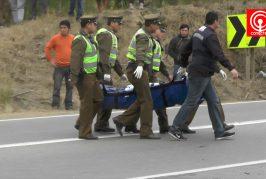 Chofer muere tras chocar contra barrera de contención en sector Quelén de Cañete