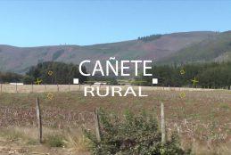 Cañete rural