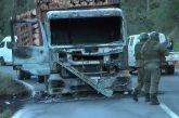 Encapuchados queman camión en las cercanías de límite regional en Contulmo y con panfleto reivindican ataque.
