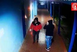 Policías trabajan para identificar a sujetos que quemaron salas de Liceo B56 de Cañete.