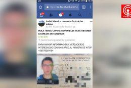 Municipio de Contulmo denunció eventual estafa por venta de licencias de conducir falsas.