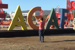Municipio de Cañete desvinculó a abogada que inscribió marca FAGAF a su nombre.