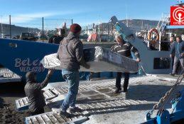Parten servicios de carga marítima para habitantes de Isla Mocha.