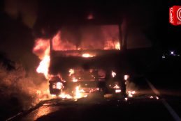 Encapuchados queman camión forestal en ruta Cañete – Contulmo.