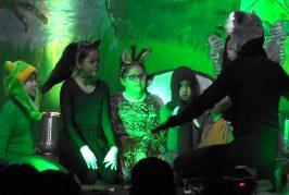 Escuela de Arte de Cañete tuvo su Gala Bosque Mágico.