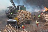 Encapuchados queman 2 camiones de carga y 1 camión grúa en zona de Butamalal en Cañete