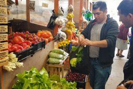 Feria Hortícola de Cañete cumplió un año vendiendo productos de la zona y de calidad.