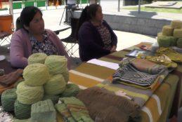 En Curanilahue se realizó la Feria del Emprendimiento de Mujeres de la provincia de Arauco.
