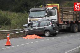 Conductora de 58 años murió tras colisionar su auto contra un camión maderero en ruta Cañete – Contulmo.