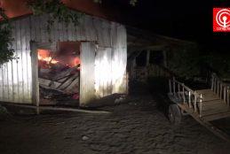 Encapuchados golpearon y maniataron a cuidador en violento ataque incendiario en Tirúa.