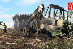 Violento atentado perpetrado por encapuchados en Lebu deja 9 maquinarias quemadas.