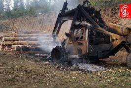 En Contulmo -en menos de 24 horas- encapuchados han quemado diez maquinarias.